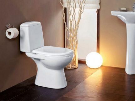 Upright toilet