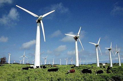 Wind generators on the field