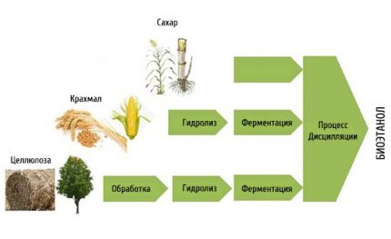 The main component of biofuel is alcohol