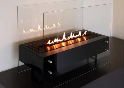 Biofireplace with screen