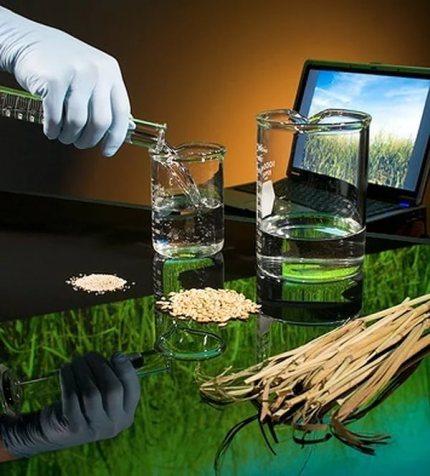 Bioethanol safety