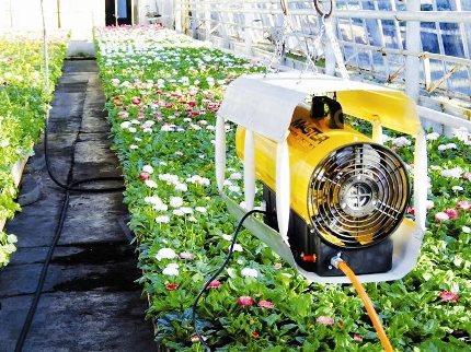 Ventilateur thermique dans la serre
