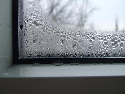 Condensation et moisissure sur les fenêtres - signe d'un dysfonctionnement de la ventilation