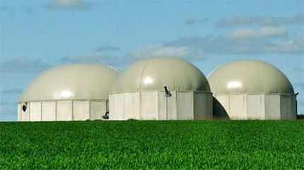 Industrial biofuel installations