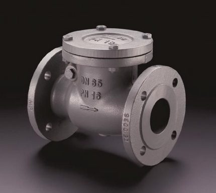 Flange check valve