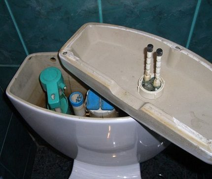 Cleaning the toilet bowl