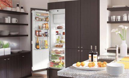 Vienkameras ledusskapis ar saldētavu