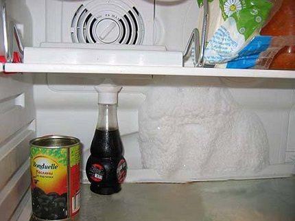 Apledo ledusskapja aizmuguri