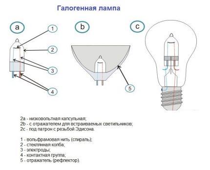 Varieties of halogen lamps