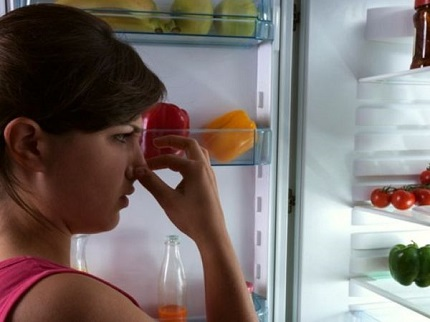 The smell of the refrigerator