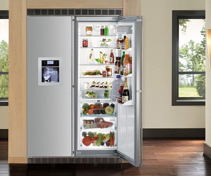 Model of the refrigerator with swing doors