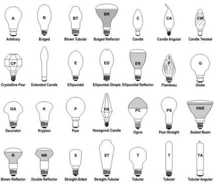 Bulb bulb