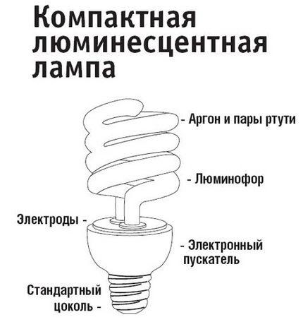 Le dispositif des lampes fluorescentes compactes