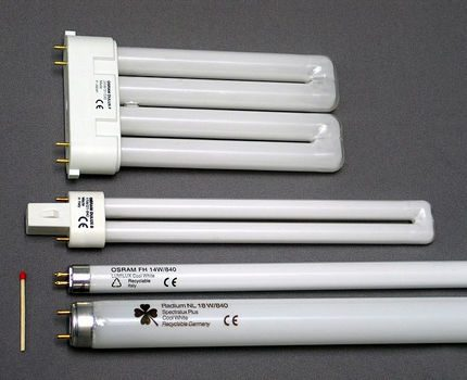 Fluorescent tubes of various shapes