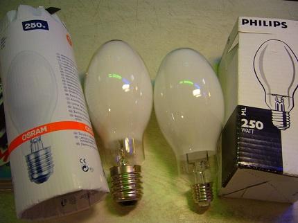 DRL Lamp Manufacturers