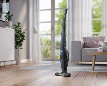 Vacuum cleaner with vertical parking