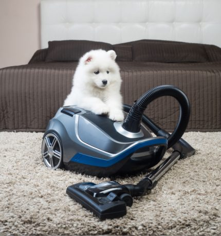 Midea carpet cleaner with pile