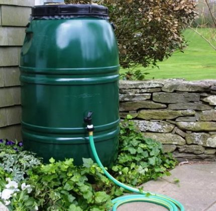 Green barrel for water in the garden