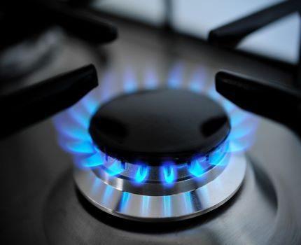 Dujų degiklis