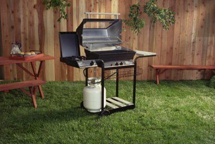 Barbecue à gaz dans la cour