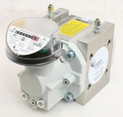 Rotary gas meter