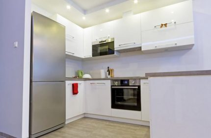 Virtuvės šaldytuvas
