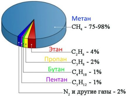 Composition of gas as a percentage