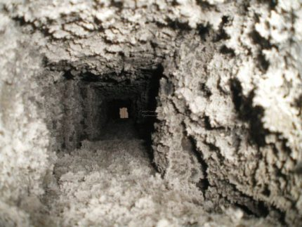 Mud in the ventilation duct of an apartment building