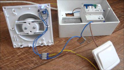 Connectez le ventilateur à l'électricité