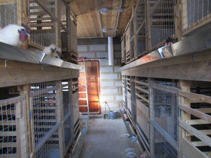 Tunnel ventilation