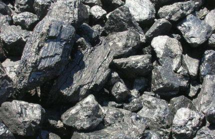 Melnās ogles