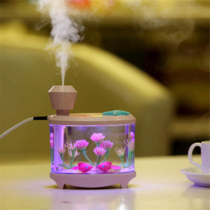 Humidifier with ionizer