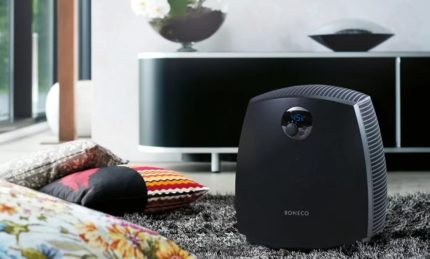 Humidifier with ionizer in the apartment