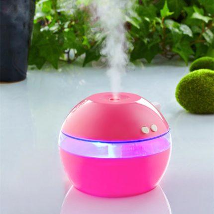 Steam humidifier